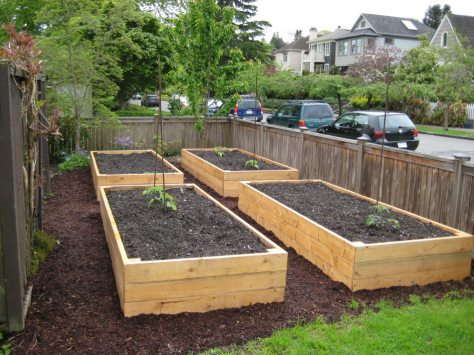 How to build Raised Beds Ebook